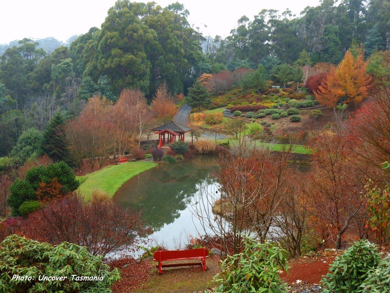 Emu Valley Rhododendron gardens. | Tasmania | Pinterest | Tasmania