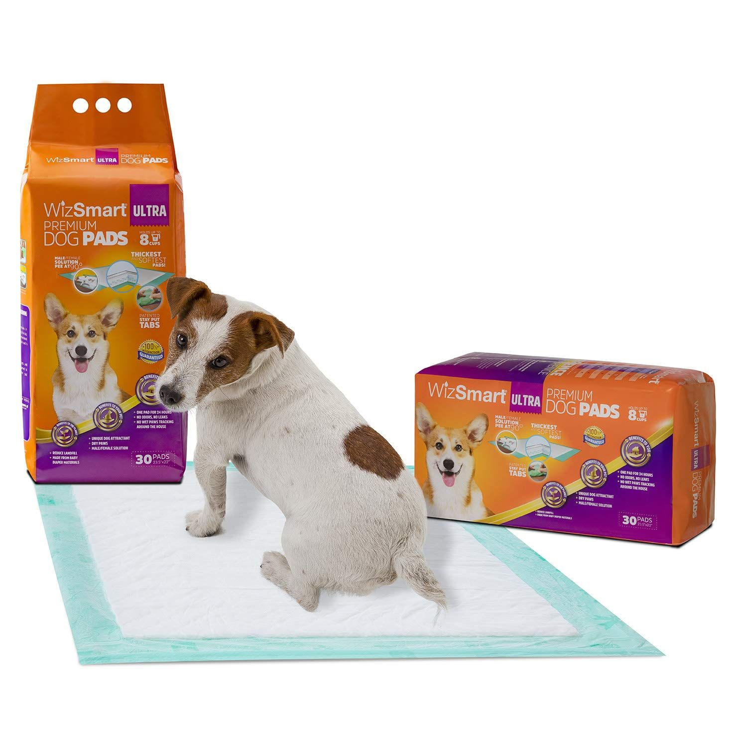 Wizsmart All Day Dry Premium Dog And Puppy Training Pads Made With Recycled Unused Baby Diapers And Eco Friendly Materials D Puppy Pads Training Dog Pads Paw