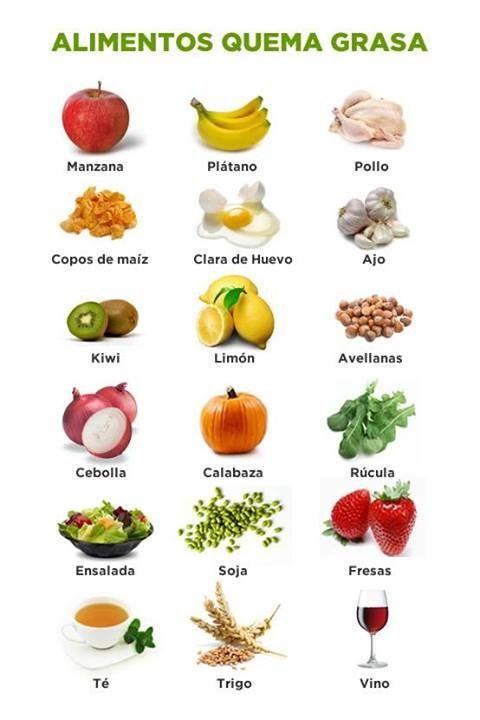 dieta de alimentos para quemar grasa
