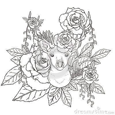 gracefuldeercoloringpageexquisitestyle58878769jpg 400400