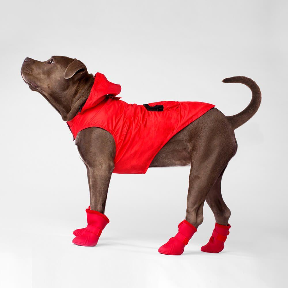 Dog Outerwear Raincoats Canada Pooch Dog Raincoat Dogs Raincoat [ 1000 x 1000 Pixel ]