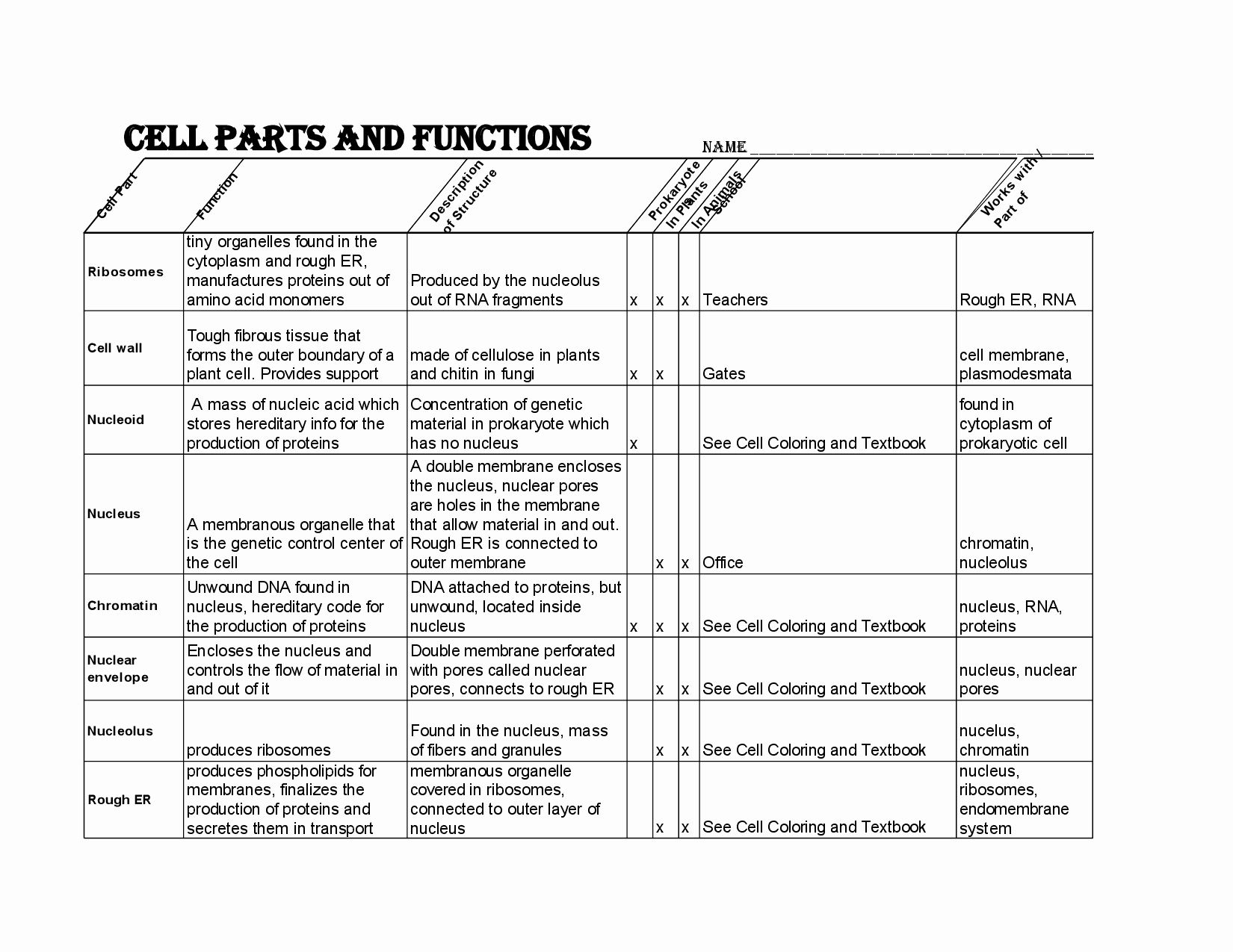 50 Cell Membrane Images Worksheet Answers In 2020 With Images