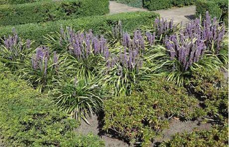 Escort sarasota florida