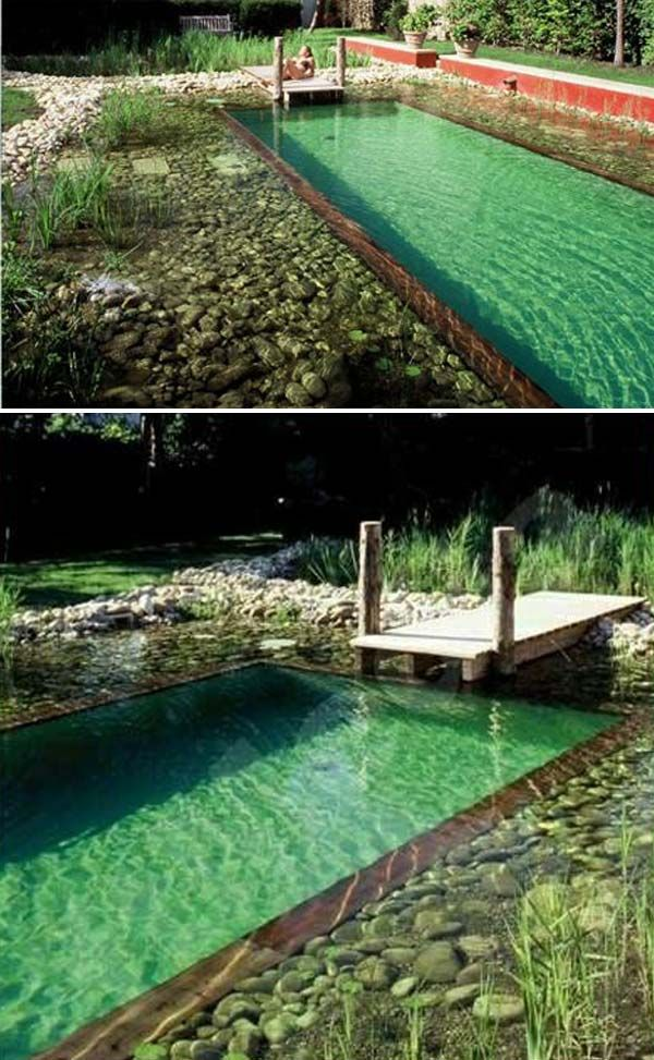 Https Proudhomedecor Com Wp Content Uploads 2018 05 Natural Swimming Pools 13 Jpg In 2020 Diy Swimming Pool Natural Swimming Pools Swimming Pond