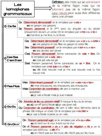 Les homophones grammaticaux pinterest les homophones for Dans homophone