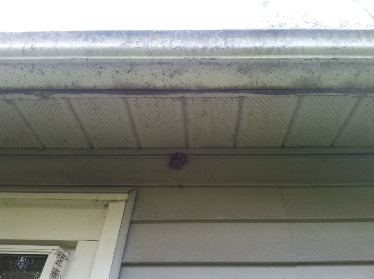 Pin On Pressure Washing Asheville By Asheville Gutter Cleaning And Maintenance