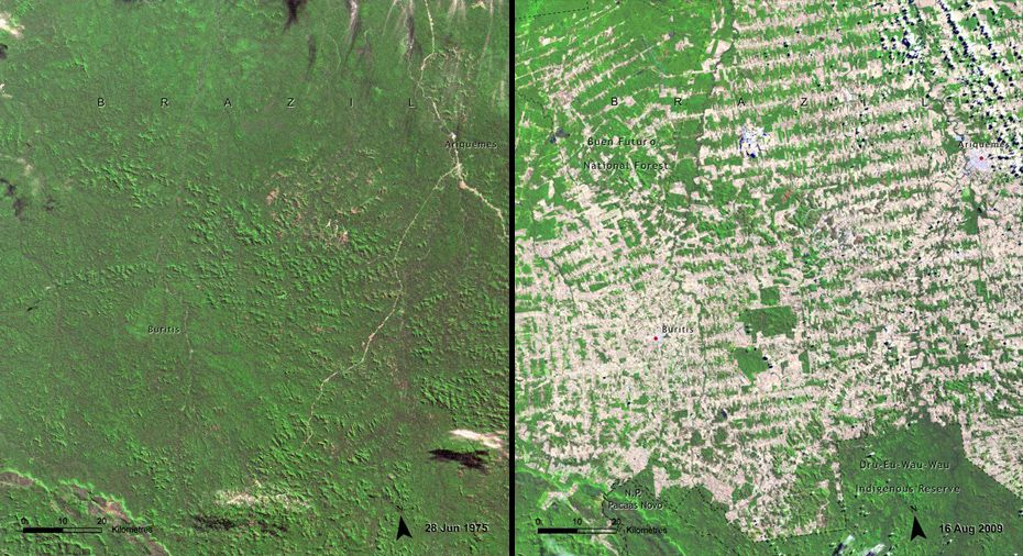 Deforestation Brazil Rondonia Is Part Of The Brazilian Amazon