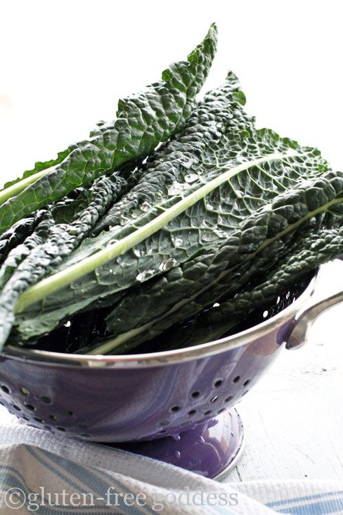 raw lacinato kale aka dinosaur kale