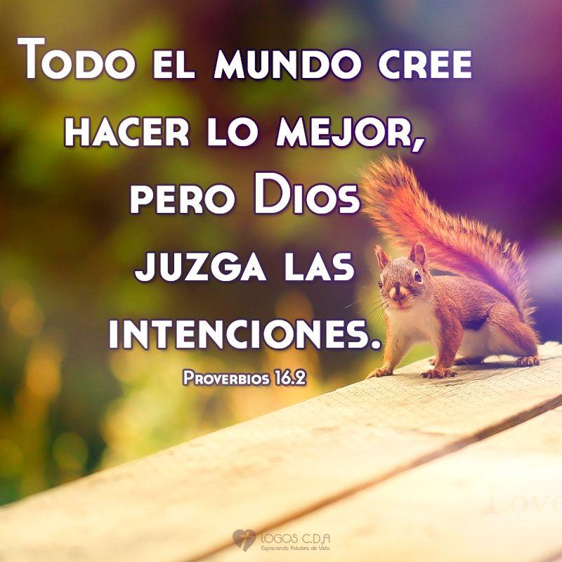 Dios conoce las intenciones del ser humano   Proverbios   Pinterest ...