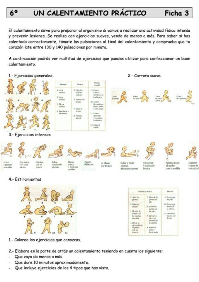Calentamiento Practico Activo Trabajo Educacion Fisica Ejercicios De Educacion Fisica Actividades Educacion Fisica