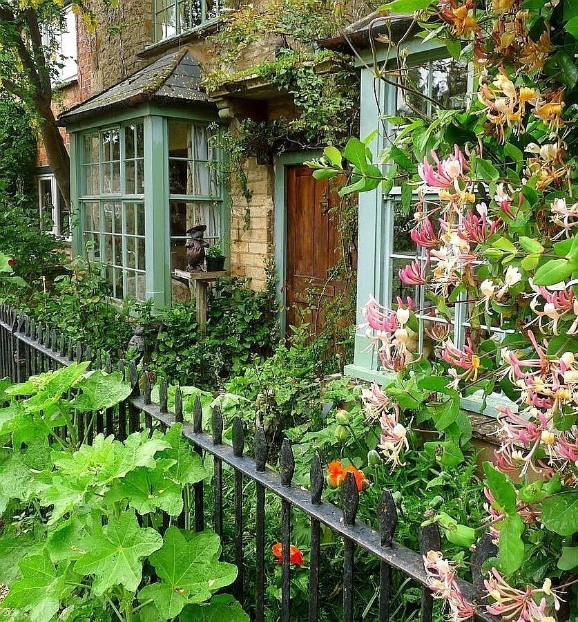 This Ivy House English Cottage Garden English Cottage Style Cottage Garden