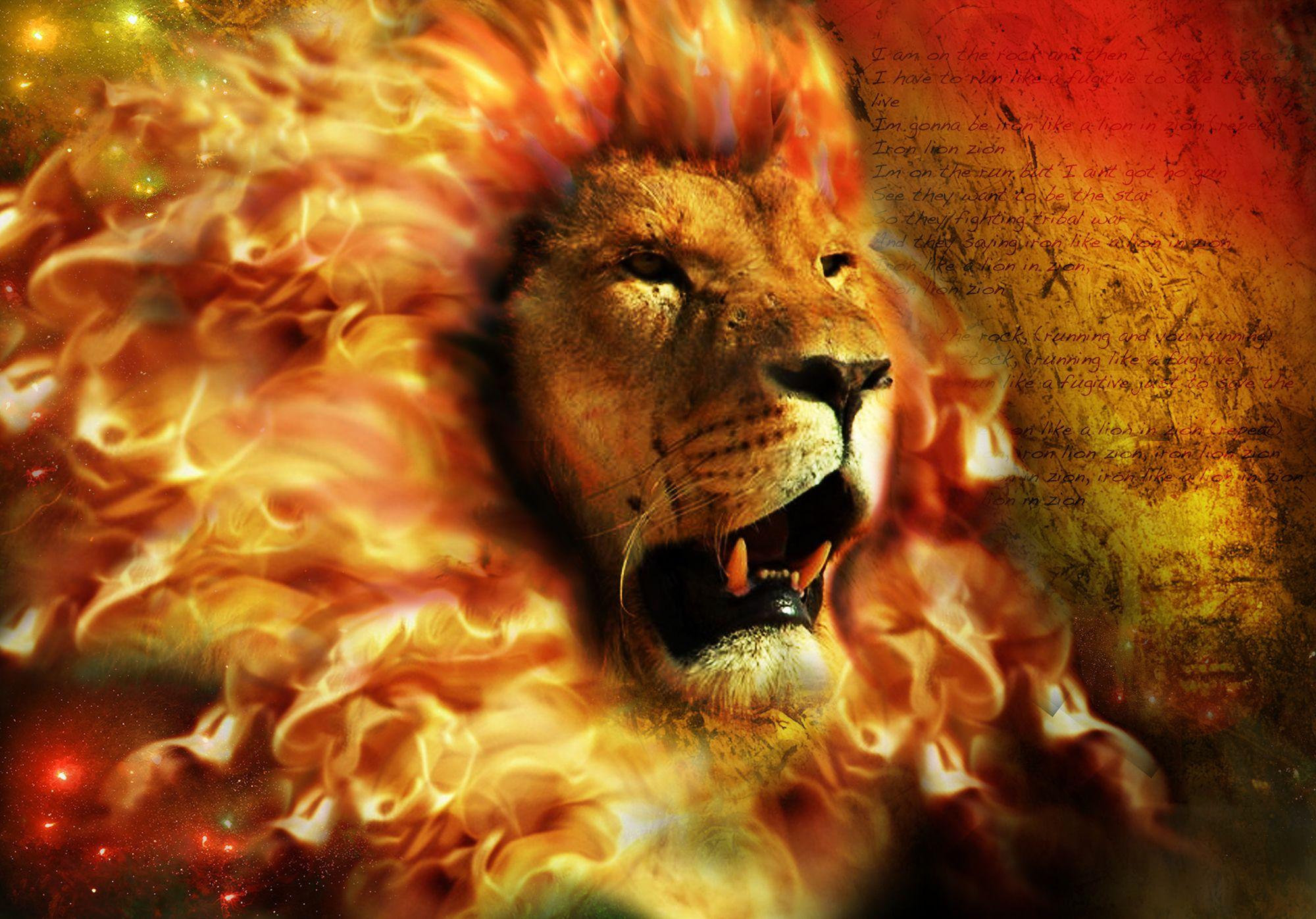 lion fire wallpaper