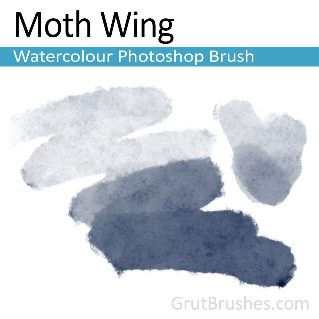 Moth Wing Photoshop Watercolour Brush Photoshop Brushes