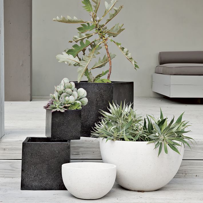 Terrazzo planters in chalk and charcoal against a stunning soft palette: pale sage and mulberry