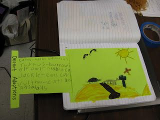 Science Notebooking: Pull-out for the science notebook.... students illustrate a habitat on the envelope. On the pull-out tab, they list facts and details about that environment/habitat.