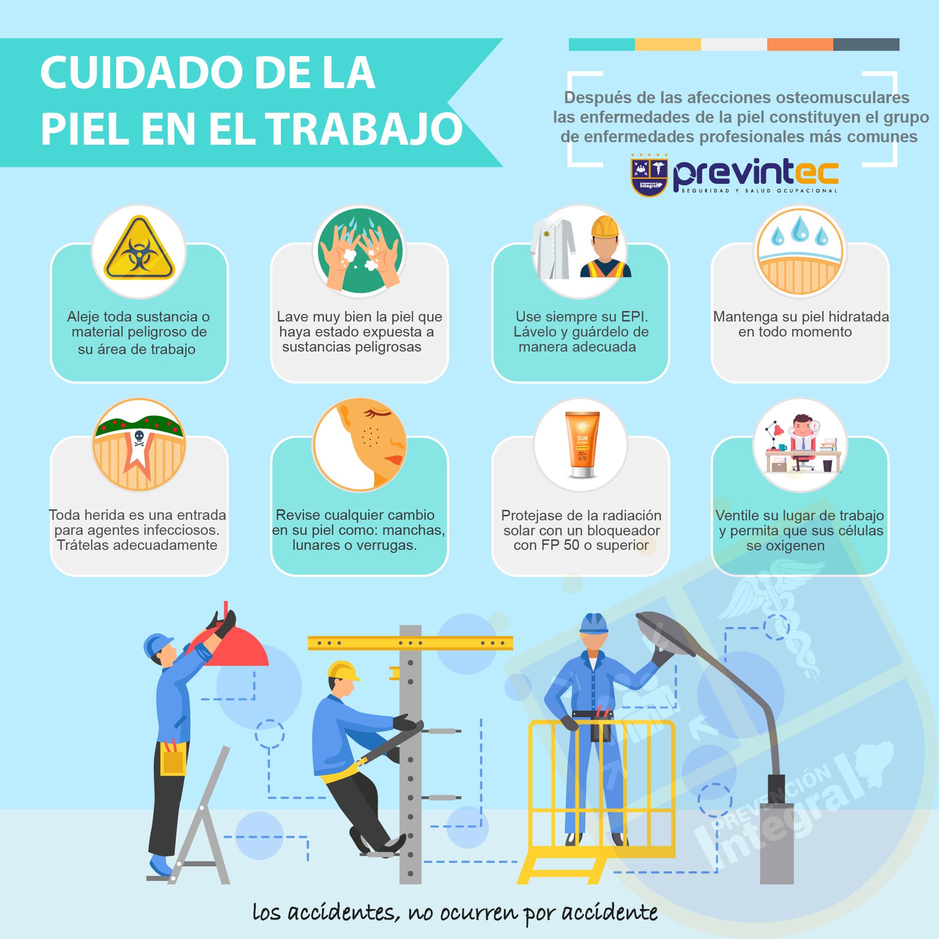 Infograma, Cuidado de la Piel en el Trabajo