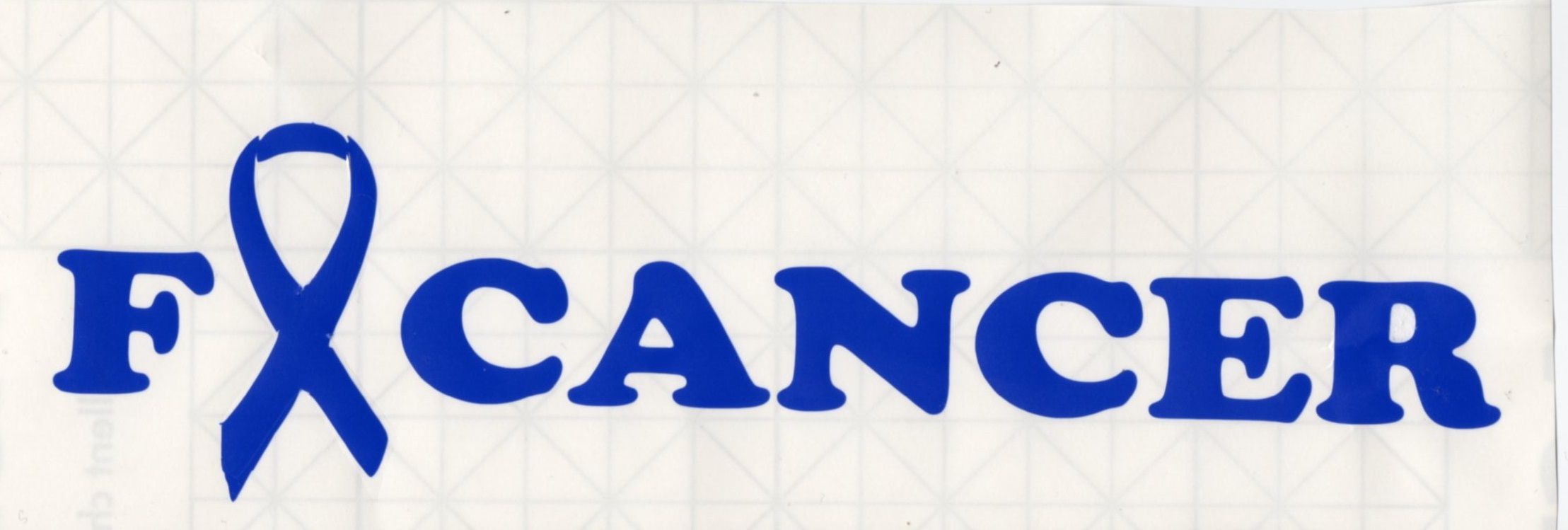 F-Cancer decal  www.teambethcancerawareness.com