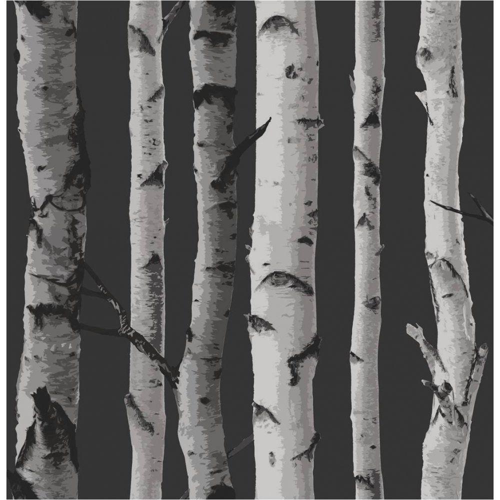 Buy Fine Decor Birch Tree Wallpaper Black Grey Birch Tree Wallpaper Birches Wallpaper Tree Wallpaper