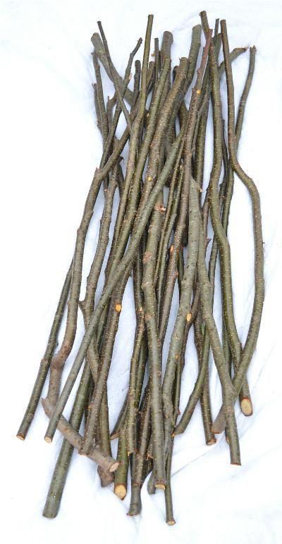 Alder Sticks/Twigs Furniture Crafts 3/4
