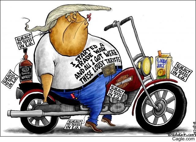 Afbeeldingsresultaat voor Harley Trump Tax cartoon
