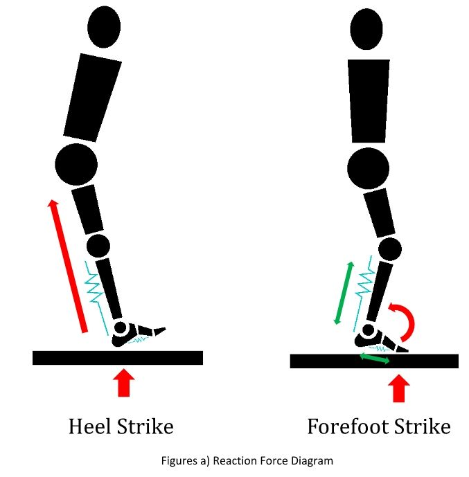 reaction force diagram