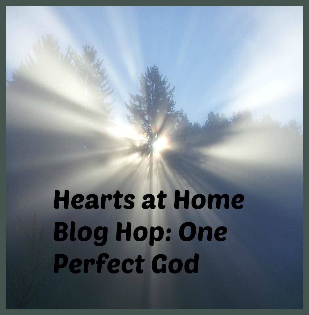 As We Walk Along the Road: Hearts at Home Blog Hop: One Perfect God
