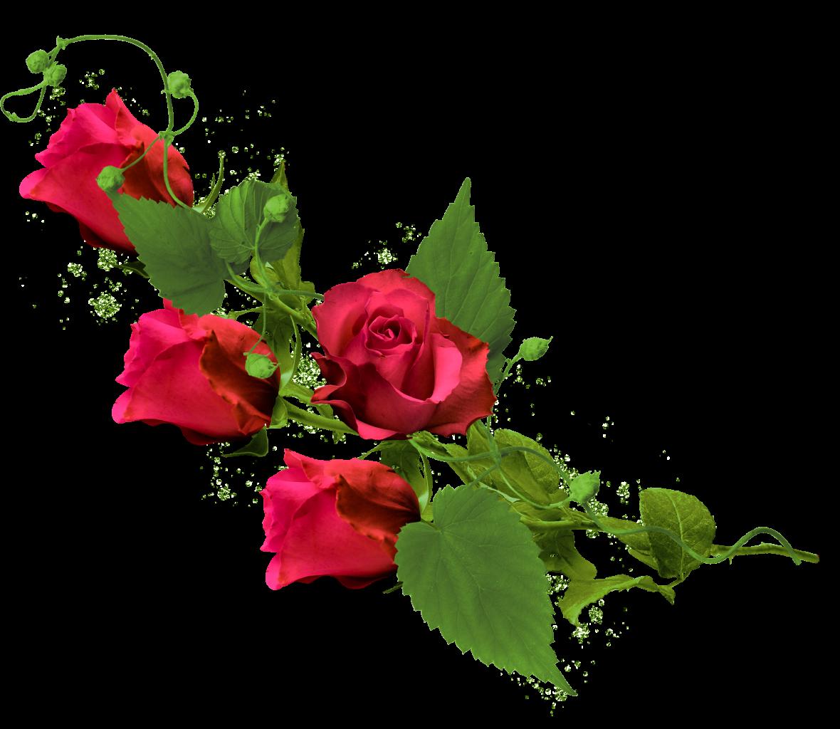 Рисунок для, открытки розы в фотошопе