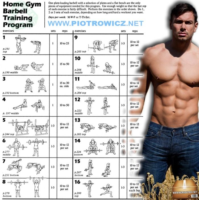 Great Barbell Strength Training Program Home Gym Barbell Training Program Full Body Workout Plan Full Body Workout Plan Barbell Workout 7 Day Workout Plan