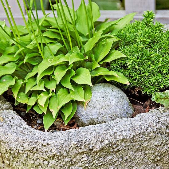 Make your own Hypertufa Trough Design Ideas