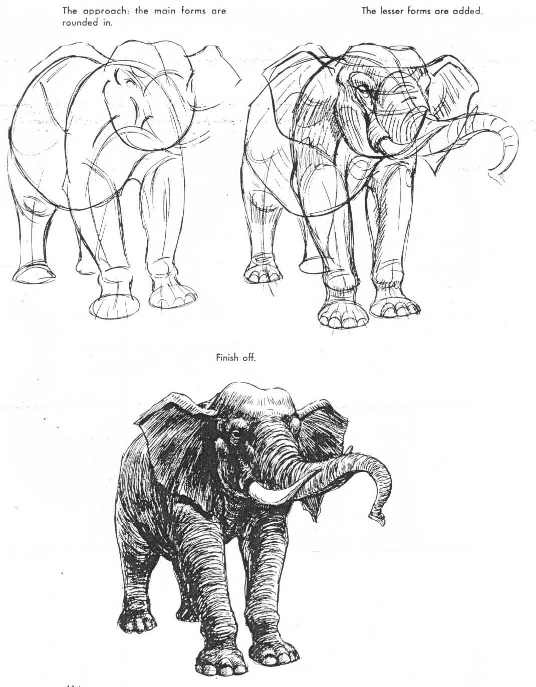 The Art of Animal Drawing by Ken Hultgren Drawings