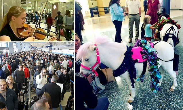 Airports across the U.S. are using a range of tactics during TSA waits