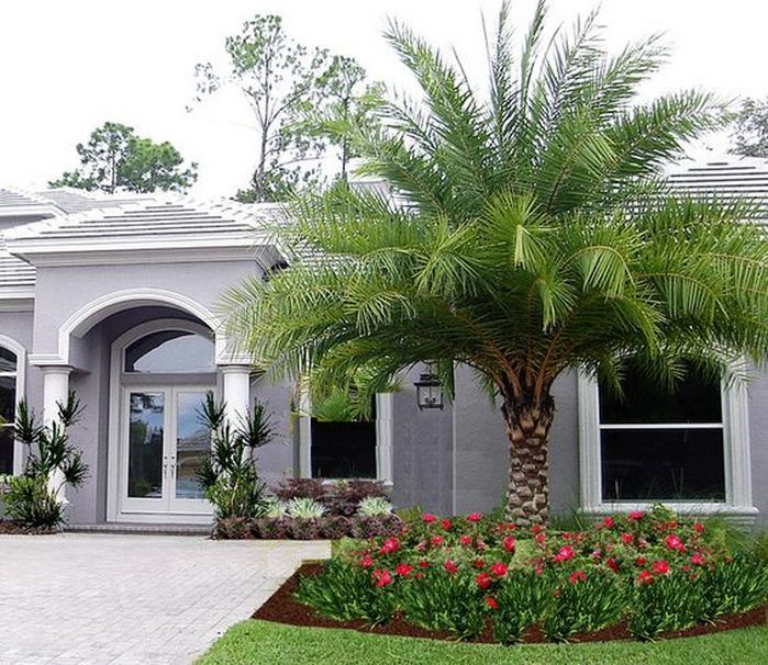 50 Florida Landscaping Ideas Front Yards Curb Appeal Palm