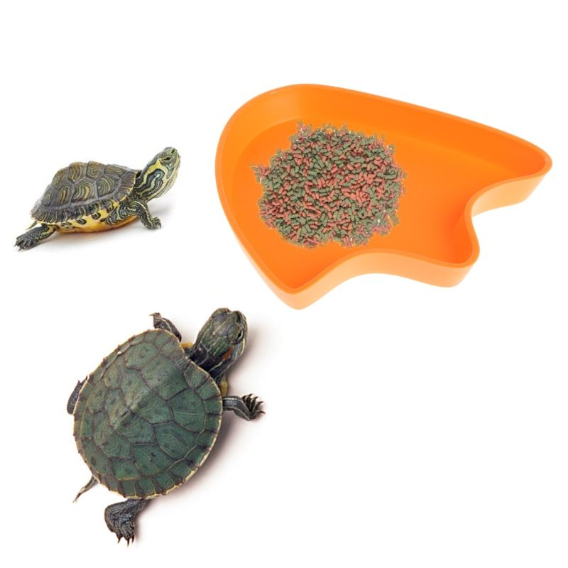 1pc Food Water Dish Bowl Feeder Tool Tortoise Reptile Lizard Turtle Amphibian Gecko Meal Worms Food Dishes Dish Bowl