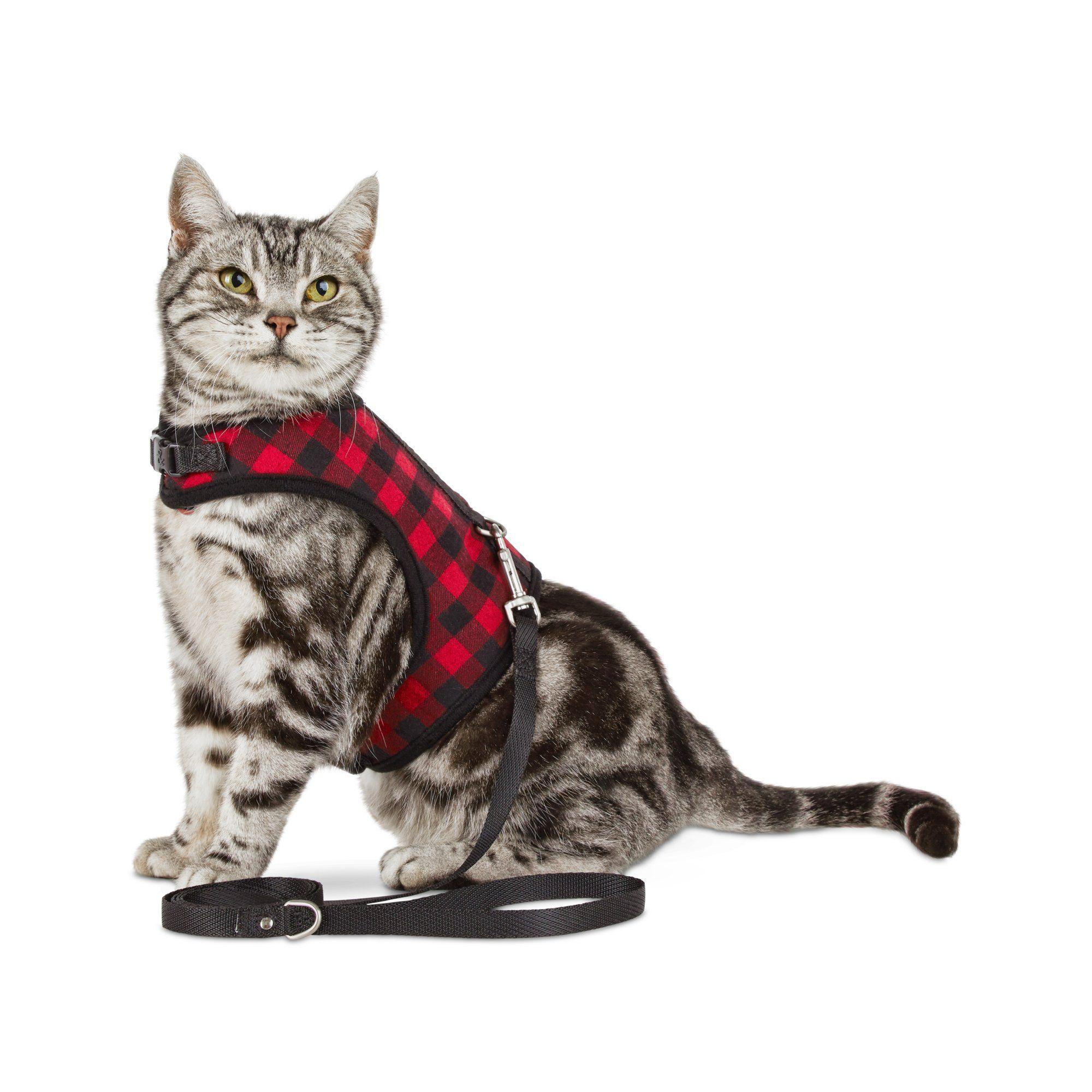 Bond Co Buffalo Check Cat Harness And Leash Set Petco Cat Harness Cat Leash Petco