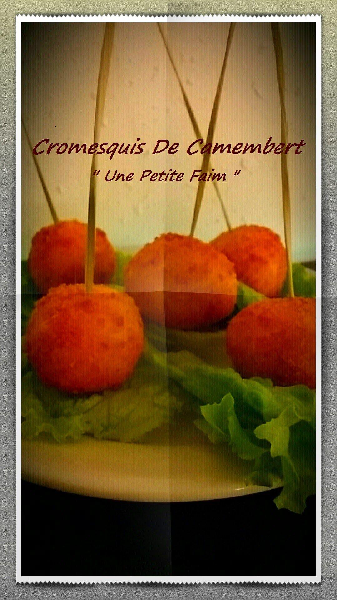 Cromesquis De Camembert   Recette camembert, Camembert et ...