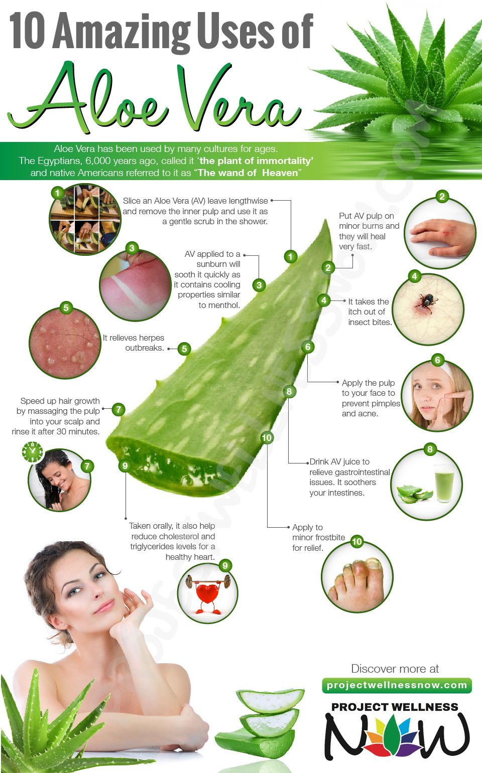 10 Amazing Uses Of Aloe Vera Project Wellness Now Aloe Vera Aloe Vera Skin Care Aloe Vera Benefits