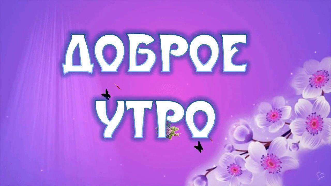 Dobroe Utro Lyubimaya Romantichnye Pozhelaniya S Dobrym Utrom Lyubimoj