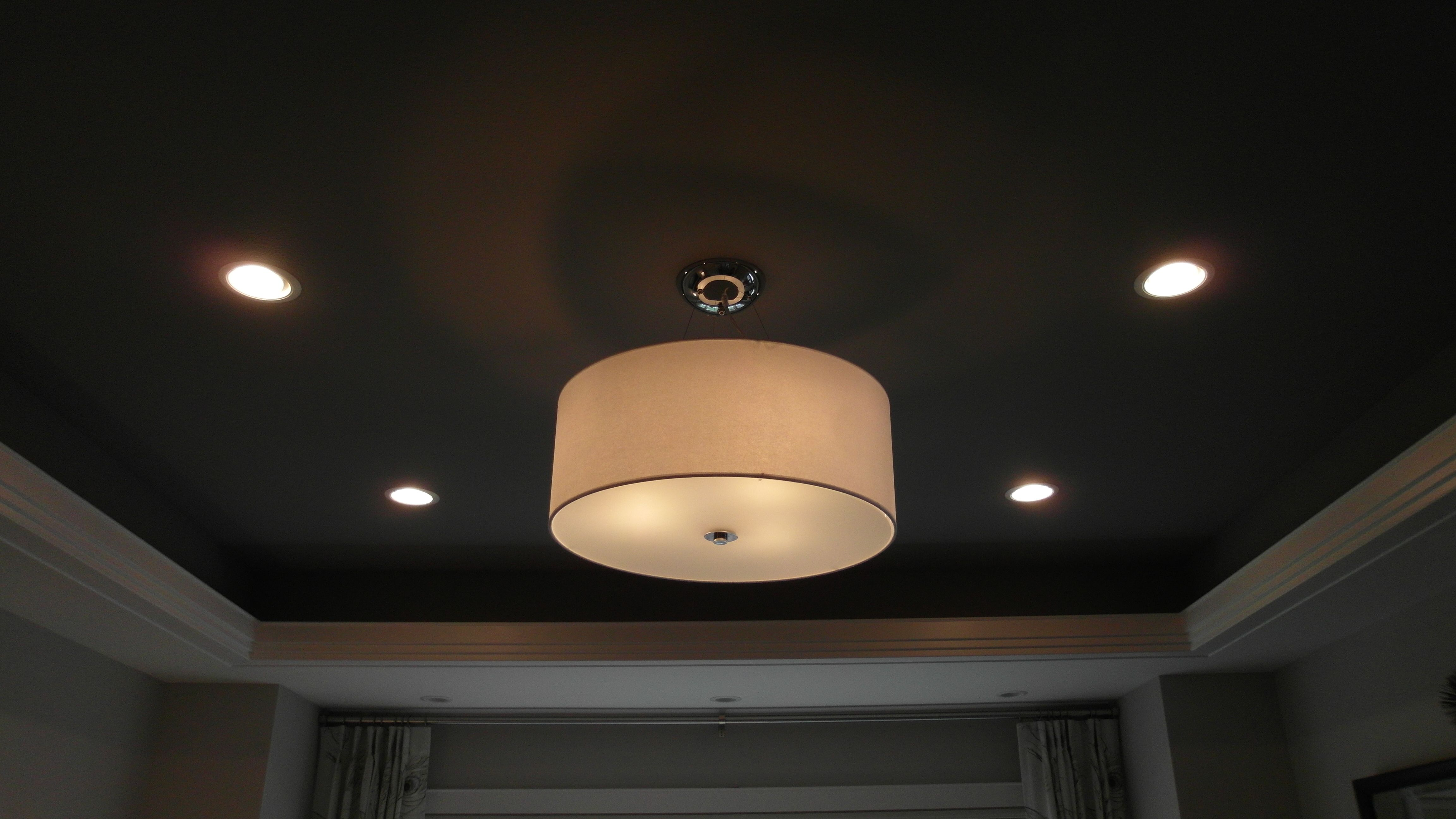 I have to have this light somewhere in the house.  I LOVE it!