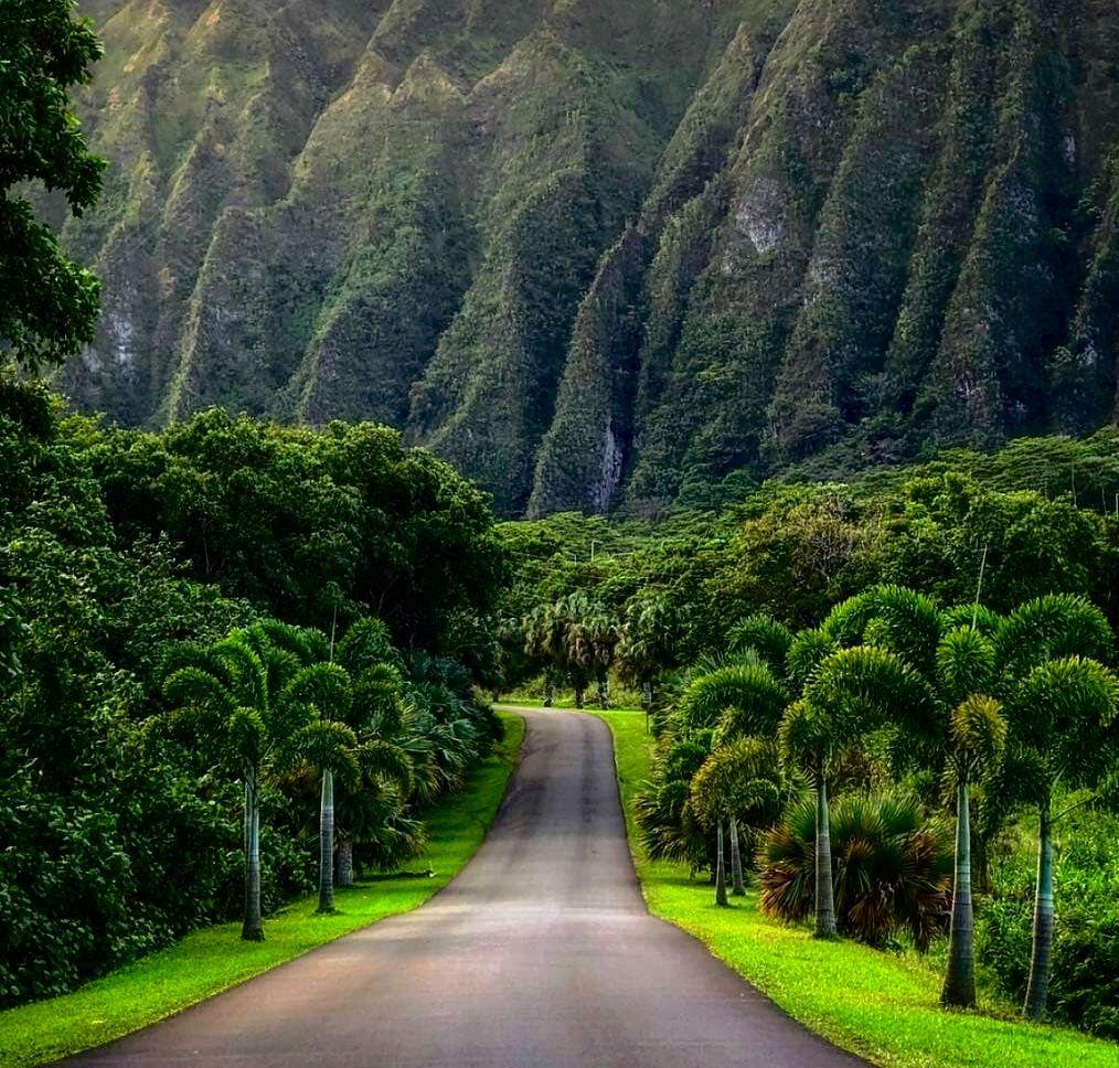 Hoʻomaluhia Botanical Gardens Kaneohe / Oahu Oahu