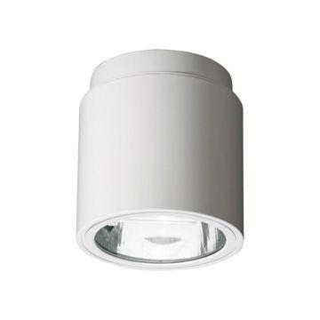 Cyl Light Surface Cfl 7815 Reggiani Lighting Usa