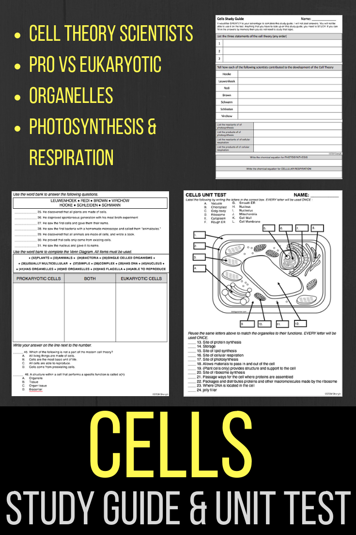 Includes ready to use and editable versions of this comprehensive cells  unit test covering: Scientists of the Cell Theory - Prokaryotic vs.