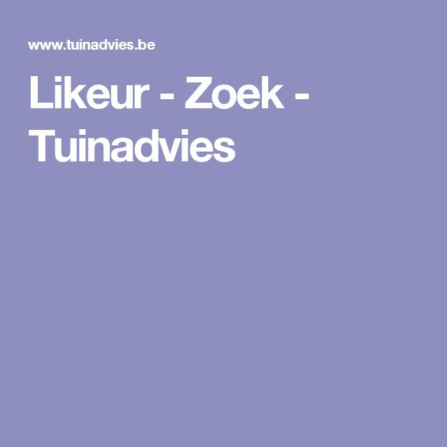 Likeur - Zoek - Tuinadvies