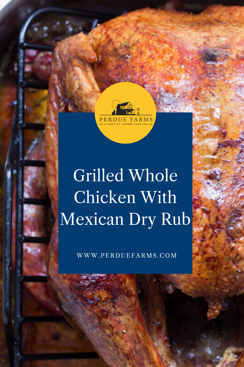 Grilled Whole Chicken With Dry Rub Grilled Whole Chicken Whole Chicken Dry Rub Recipes