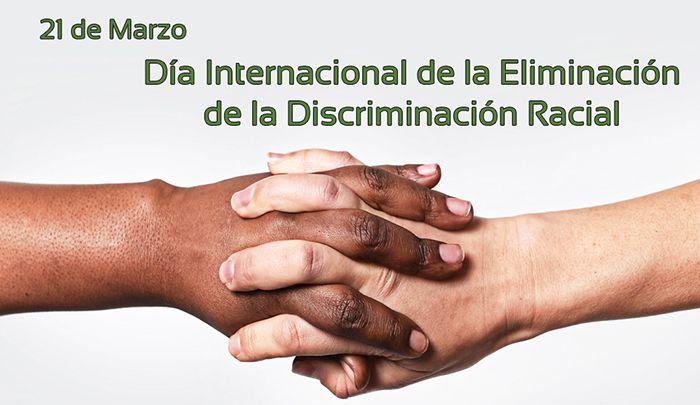 8 Ideas De Dia De La Discriminación Racial Discriminacion Día Internacional De Racismo Y Discriminacion
