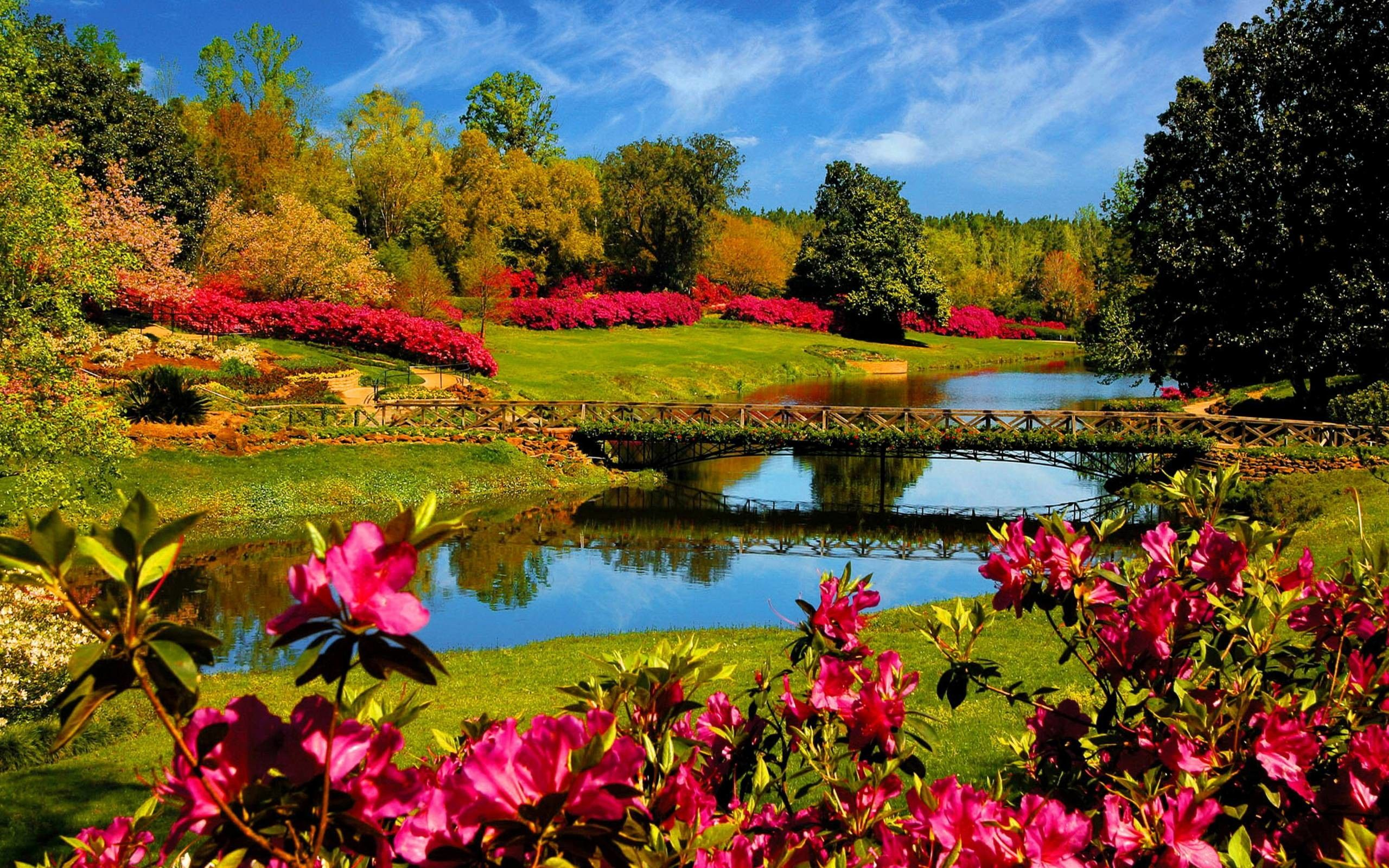 Spring Nature Wallpapers Picture Beautiful Nature Wallpaper Spring Wallpaper Spring Desktop Wallpaper
