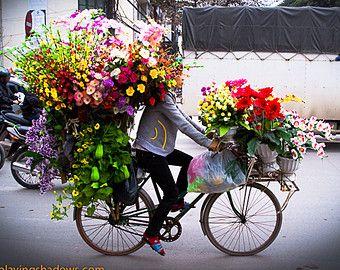 Unique colorful photography