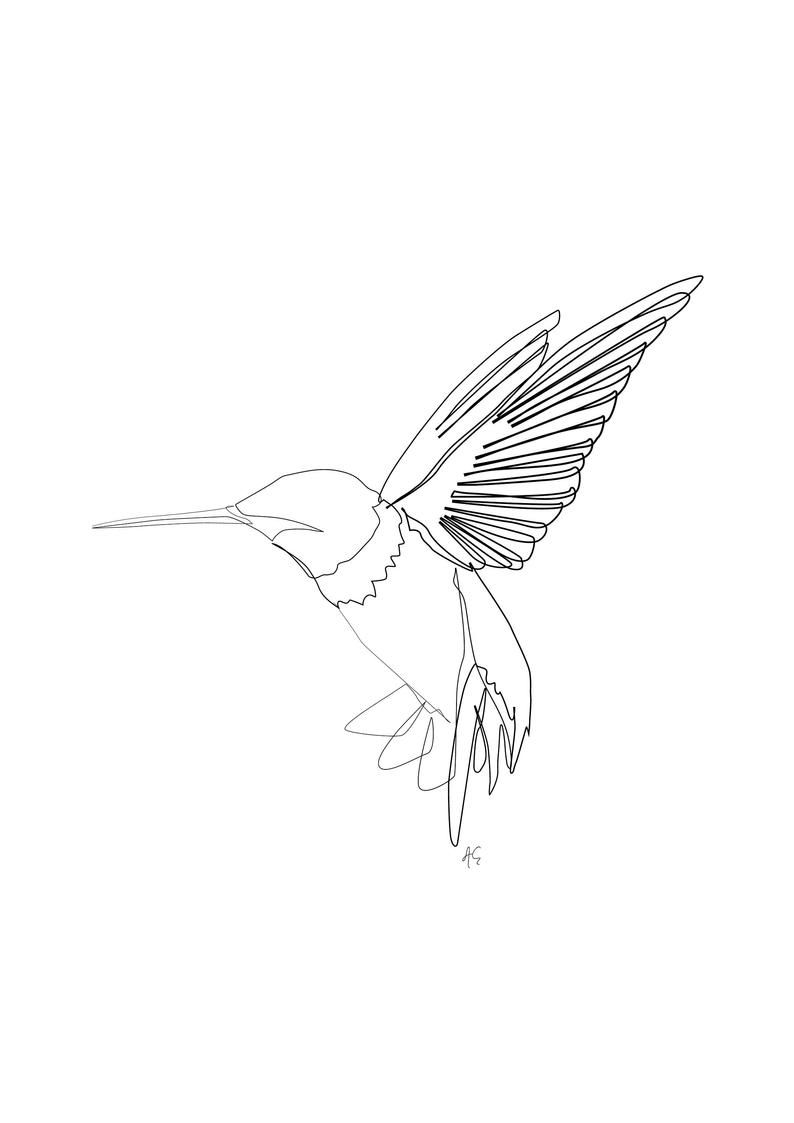 Minimal Humming Bird Art One Line Art Modern Art Black Etsy Humming Bird Art Line Art Tattoos Bird Art