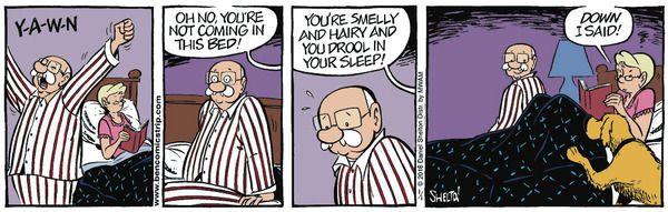 Ben comic strip daniel shelton