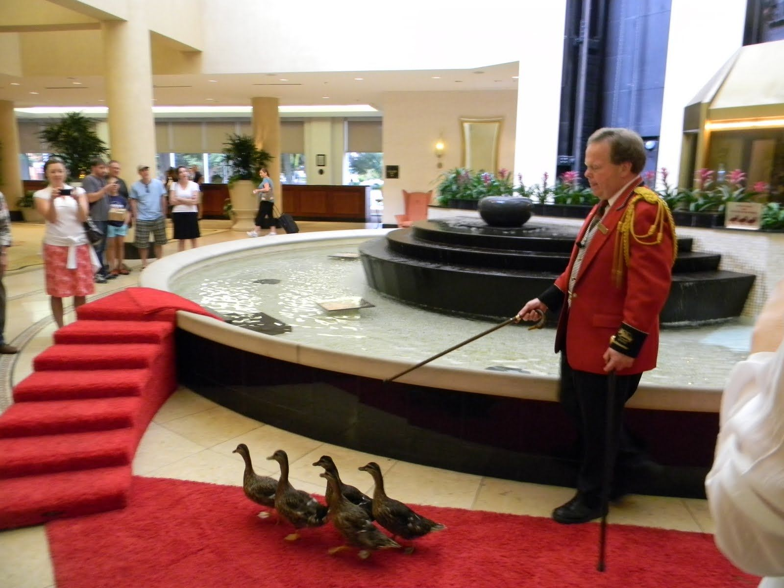 20.DUCK MASTER(Salary 85,000 ) Some hotels hire these