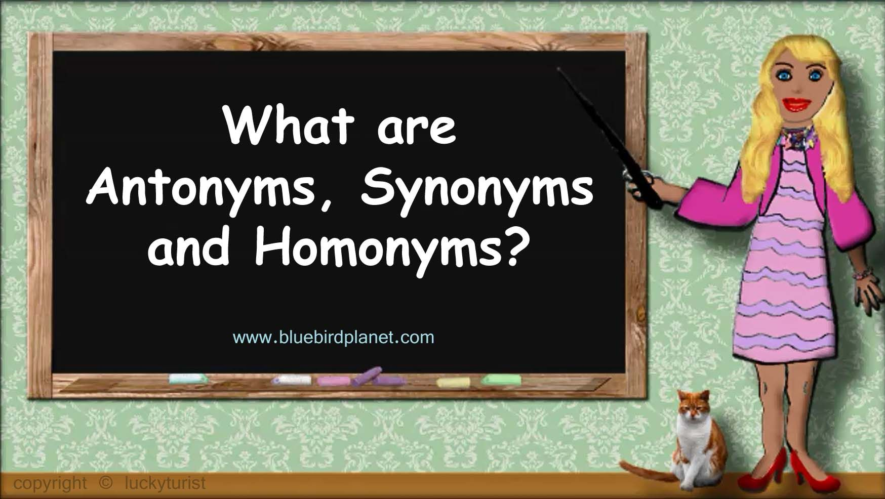 What Are Antonyms Synonyms And Homonyms